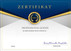 Zertifikat Professionell führen